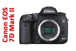 Canon EOS 7D Mark II - Corpo macchina