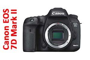 Canon EOS 7D Mark II - Still Life