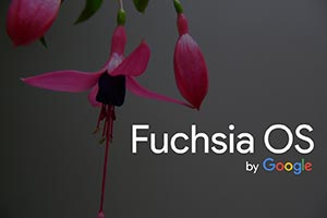 Fuchsia OS: ecco le prime immagini su laptop