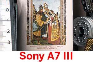 Sony A7 III: Serie ISO