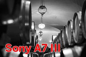 Sony A7 III: Prova sul campo