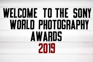 SWPA 2019: i vincitori della categoria Professional