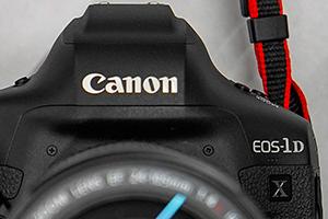 Canon EOS 1-D X Mark III: regina di velocità