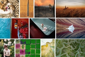 Sony World Photography Awards 2020: i vincitori della sezione Open 2020