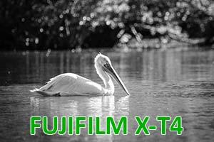 Fujifilm X-T4: Prova sul campo